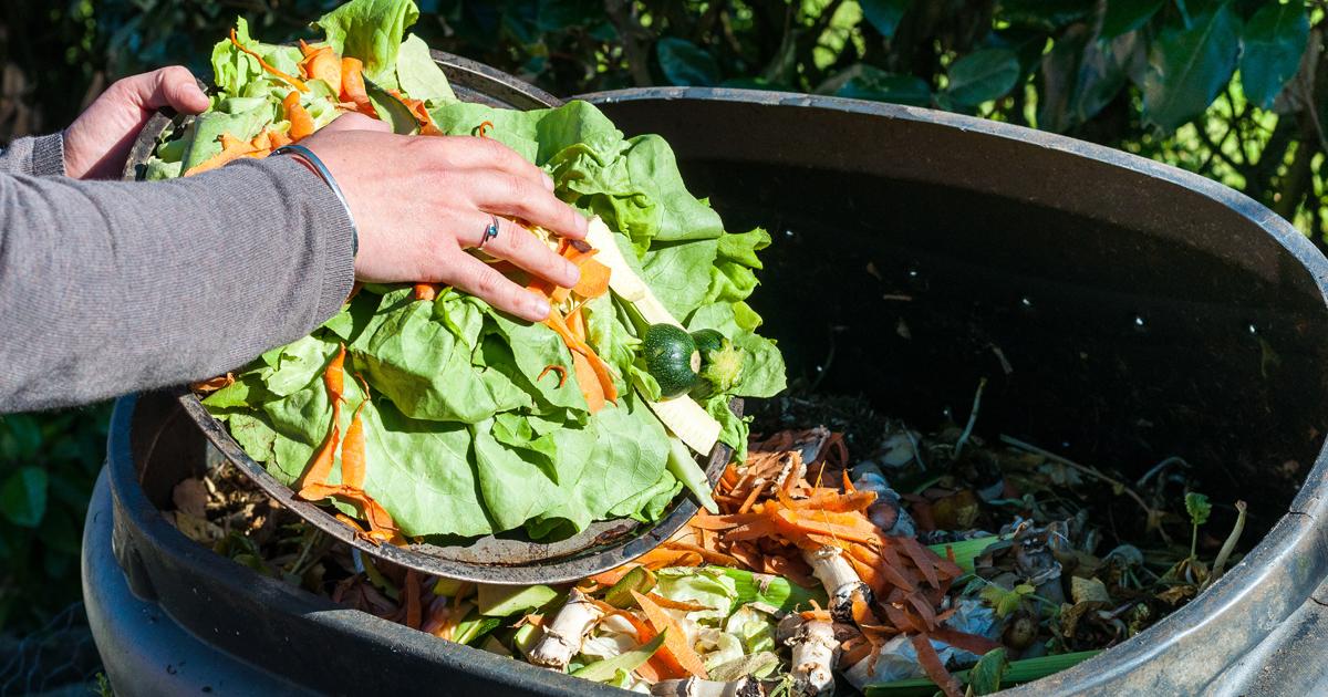 Personne qui vide des restes de légumes dans un composteur.